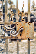 Knob Prints - White Iron Gate Details Print by Jill Battaglia