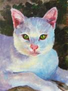 Pet Portraits Originals - White Kitty by Debra Jones