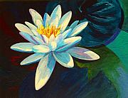 Ponds Painting Posters - White Lily III Poster by Marion Rose