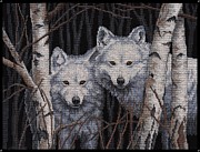 Wolf Photograph Mixed Media - White Magic by J McCombie