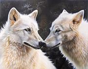 Wolf Portrait Paintings - White Magic by Sandi Baker