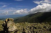 Alpine Zone Posters - White Mountain National Forest - New Hampshire USA Poster by Erin Paul Donovan
