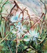 Blue Flowers Drawings - White Mums by Mindy Newman