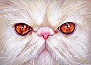 Elena Kolotusha Prints - White Persian cat Print by Elena Kolotusha