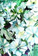 Tulips Drawings - White Petunias by Mindy Newman