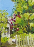 Picket Fence Originals - White Picket Fence by Coral May Barclay