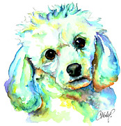 Custom Dog Portrait Paintings - White Poodle by Christy  Freeman