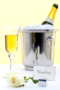 Sparkling Rose Photo Posters - White rose and champagne Poster by Richard Thomas