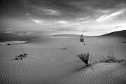 Sands Photo Acrylic Prints - White Sands Dusk Acrylic Print by Peter Tellone