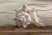Shell Art Posters - White shell Poster by Linda Sannuti