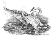 White Swan - Dreams Take Flight Print by Kelli Swan
