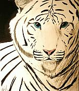 White Pastels Metal Prints - White Tiger Metal Print by Bruce Byrnes