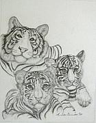 Linda Bennett Art - White Tigers-Family Photo by Linda Bennett