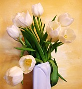 Yellow Background Posters - White Tulips on Baby Yellow Poster by Marsha Heiken
