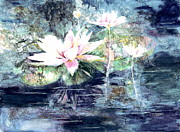 Lily Pads Framed Prints Prints - White  water lillies Print by Sharon K Wilson 