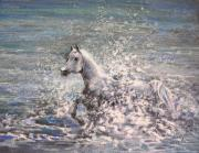 Wild Horses Drawings - White Wild Horse by Miki De Goodaboom