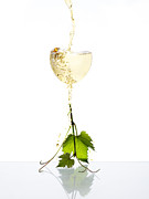 Grape Leaf Posters - White Wine Poster by Floriana Barbu