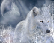 Nature Mixed Media Posters - White Wolf Poster by Carol Cavalaris