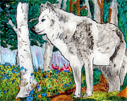 White Wolf Posters - White Wolf in Spring Poster by Phil Strang