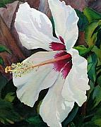White Wonder Print by Judy Mercer