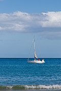 Reflection Harvest Art - White yacht sails in the sea along the coast line by Ulrich Schade