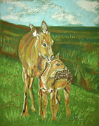 John Keaton Art - Whitetail Doe and Fawn by John Keaton