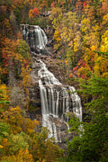 Forceful Posters - Whitewater Falls 1 Poster by Joye Ardyn Durham