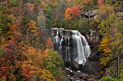 Artist With Camera Framed Prints - Whitewater Falls 2 Framed Print by Joye Ardyn Durham