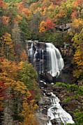 Artist With Camera Framed Prints - Whitewater Falls 4 Framed Print by Joye Ardyn Durham