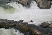 White Water Kayaking Posters - Whitewater Kayaker Paddles Poster by Skip Brown