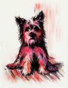 Animal Drawings Prints - who am I Print by Rachel Christine Nowicki