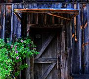 Entrance Door Metal Prints - Who Is Living Here Metal Print by Barbara Teller