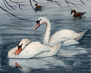Swans Paintings - Who Is Minding The Kids by Mohamed Hirji