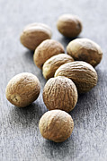 Aromatic Prints - Whole nutmeg seeds Print by Elena Elisseeva