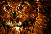Owl Digital Art Metal Prints - Whoo Metal Print by Joetta West