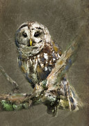 Animal Digital Art Digital Art Prints - Whoooo Print by Betty LaRue