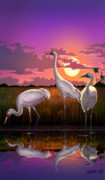 Tropical Birds Posters - Whooping Cranes Tropical Florida Everglades Sunset birds landscape scene purple pink print Poster by Walt Curlee