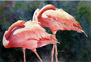 Jewel Tone Paintings - Whos Peekn - Flamingos by Roxanne Tobaison