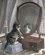 Mirror Framed Prints - Whos The Fairest of them All Framed Print by Frank Paton