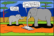Noel Elliot - Why Elephants Never...