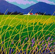 Cottage Print Paintings - Wicklow Meadow Ireland by John  Nolan