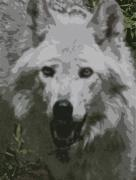 Graceful Wolf Running Painting Prints - Wide Eyes Vision Print by Debra     Vatalaro