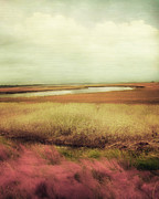 Landscapes Glass Prints - Wide Open Spaces Print by Amy Tyler