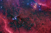 Orion Nebula Art - Widefield View In The Orion by John Davis