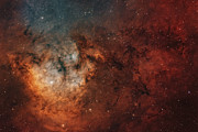 Stellar Photos - Widefield View Of The Young by Rolf Geissinger
