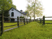 Widener Farms Horse Stable Print by Bill Cannon