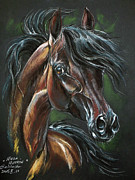 Horse Drawing Framed Prints - Wieza Wiatrow Framed Print by Angel  Tarantella