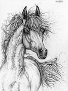 Horse Drawing Posters - Wieza Wiatrow polish arabian mare  drawing 1  Poster by Angel  Tarantella