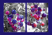 Wild Berries Diptych Print by Steve Ohlsen