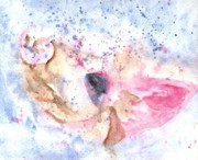 Wild Boar Paintings - Wild Boar OnThe Loose by Carol Wisniewski